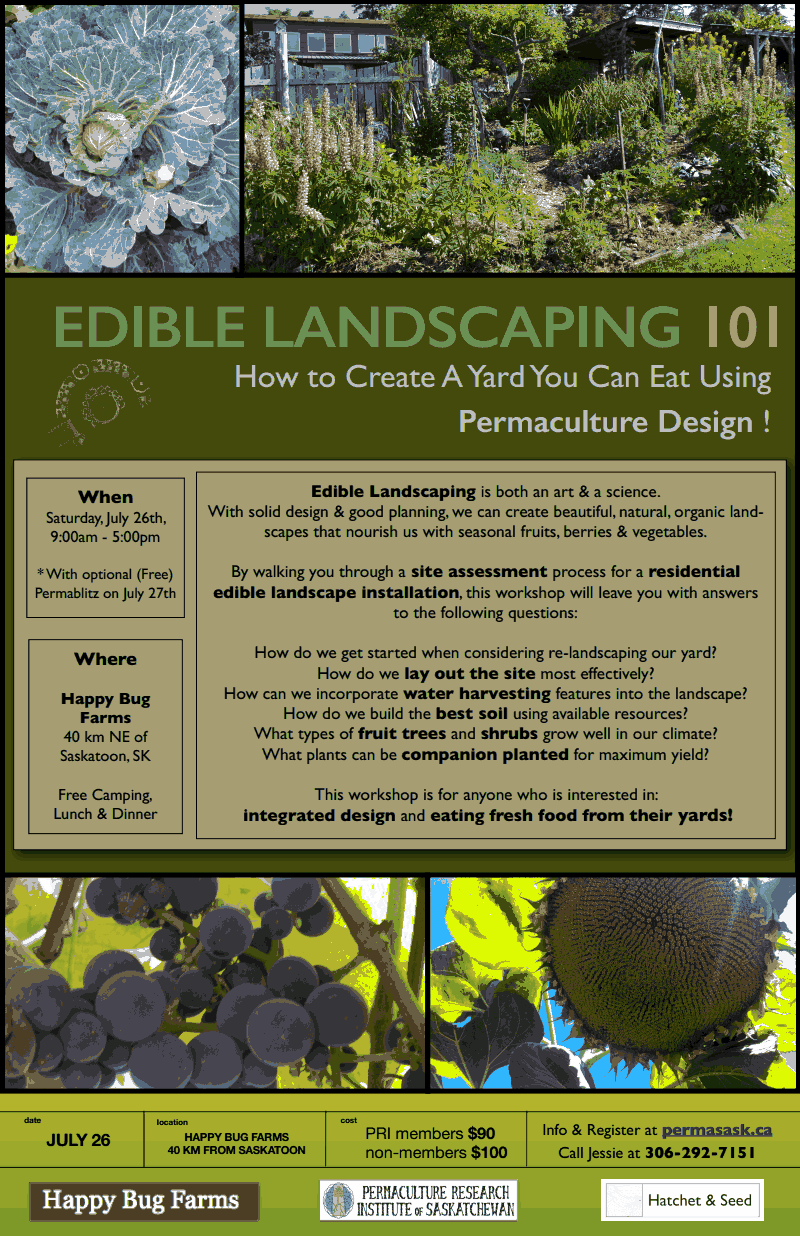 edible landscaping 101 u2013 how to create a yard you can eat using